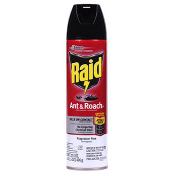 best-roach-spray